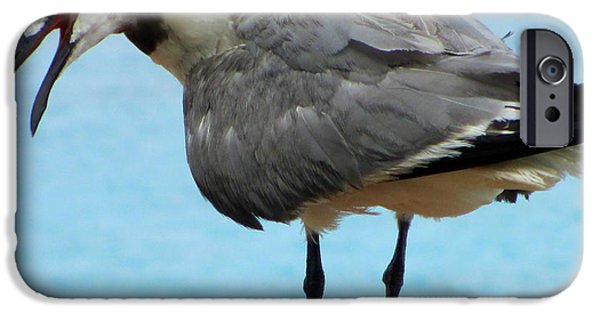 Seagull iPhone Cases - Seagull On The Rail iPhone Case by Randall Weidner