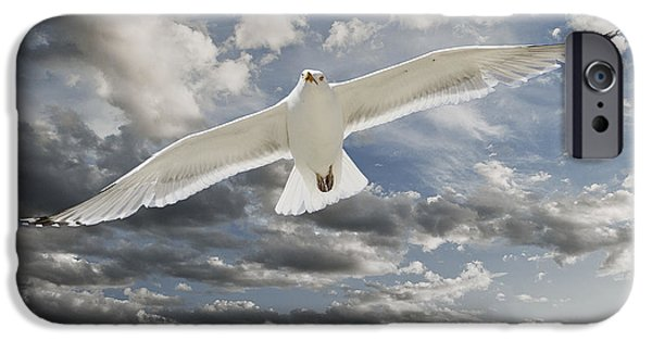 Flying Seagull Digital Art iPhone Cases - Seagull iPhone Case by Rick Mosher