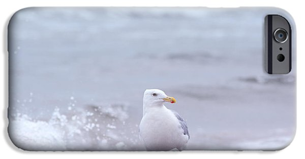 Flying Seagull iPhone Cases - Seagull iPhone Case by Toppart Sweden