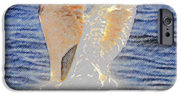 Flying Seagull iPhone Cases - Seagull Flying  iPhone Case by David Lee Thompson