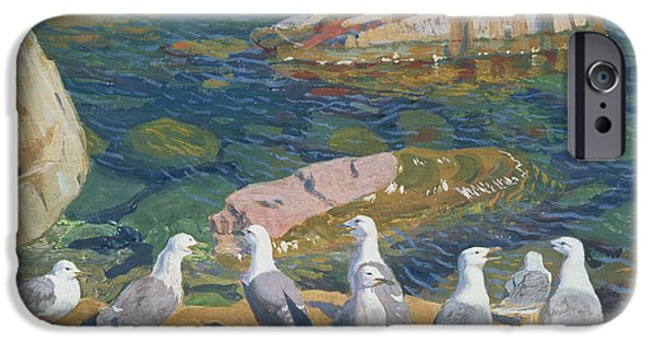 Seagull iPhone Cases - Seagulls iPhone Case by Arkadij Aleksandrovic Rylov