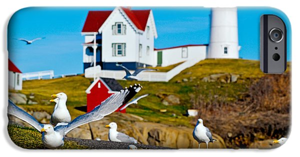 Nubble Lighthouse iPhone Cases - Seagulls At Nubble Lighthouse, Cape iPhone Case by Panoramic Images