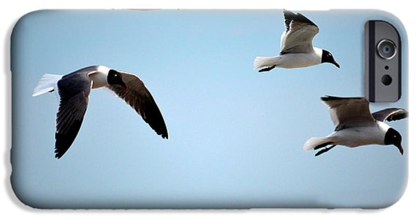 Recently Sold -  - Flying Seagull iPhone Cases - Seagulls in flight iPhone Case by Jerry Gatewood