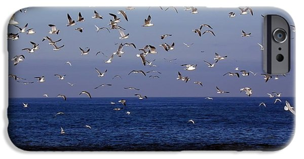 Flying Seagull iPhone Cases - Seagulls over the Jersey Shore iPhone Case by Mountain Dreams