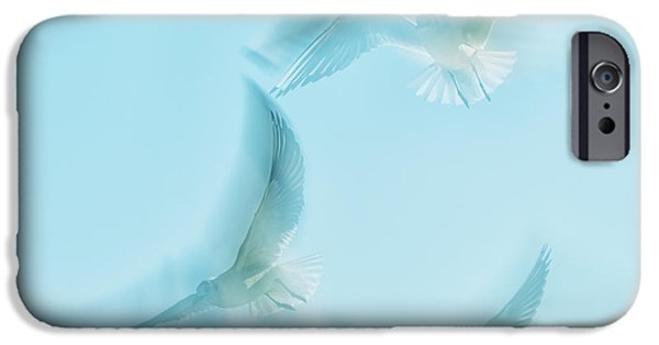 Seagull iPhone Cases - Seagulls  iPhone Case by Stylianos Kleanthous