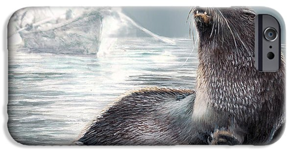 Wildlife Imagery iPhone Cases - Seal on Icy shores iPhone Case by Gina Femrite