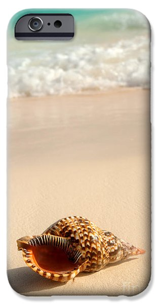 Summer iPhone Cases - Seashell and ocean wave iPhone Case by Elena Elisseeva