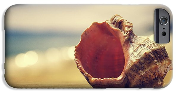 Beach Pyrography iPhone Cases - 	Seashell in the sand  iPhone Case by Jelena Jovanovic