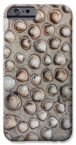 Abstract Forms Reliefs iPhone Cases - Seashells art iPhone Case by Desislava Panteva