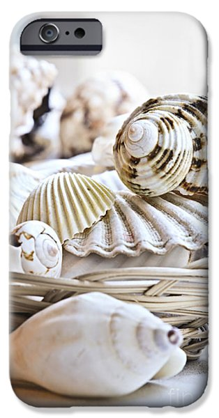 Basket iPhone Cases - Seashells iPhone Case by Elena Elisseeva