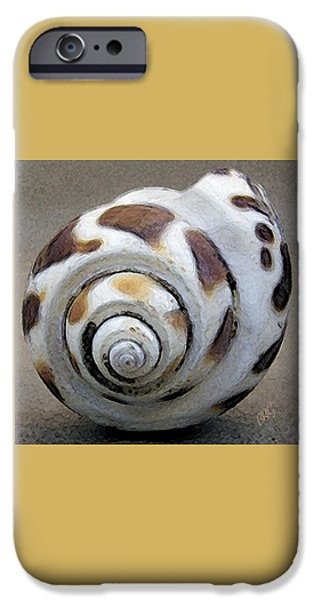Grey Photographs iPhone Cases - Seashells Spectacular No 2 iPhone Case by Ben and Raisa Gertsberg