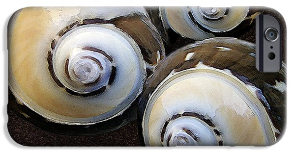 Raisa Gertsberg iPhone Cases - Seashells Spectacular No 23 iPhone Case by Ben and Raisa Gertsberg