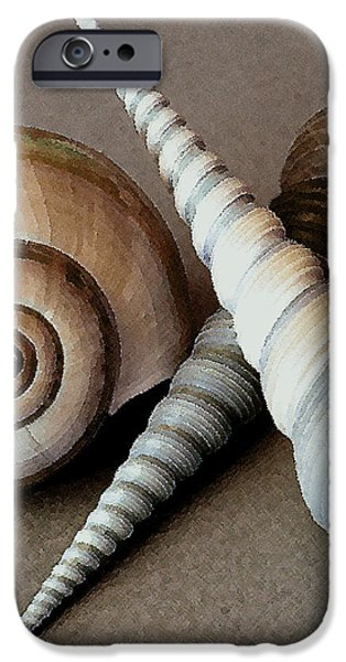 Seashells Spectacular No 24 iPhone Case by Ben and Raisa Gertsberg