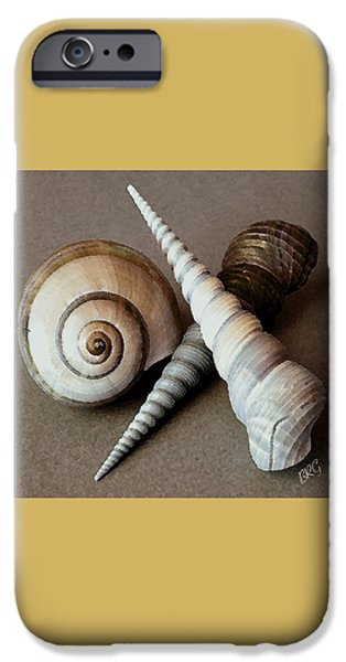 Beige iPhone Cases - Seashells Spectacular No 24 iPhone Case by Ben and Raisa Gertsberg
