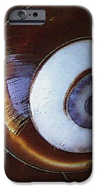 Seashells Spectacular No 26 iPhone Case by Ben and Raisa Gertsberg