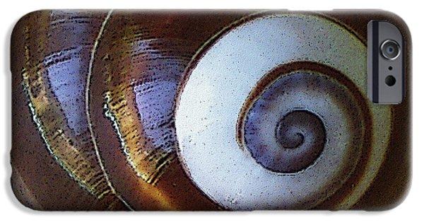 Raisa Gertsberg iPhone Cases - Seashells Spectacular No 26 iPhone Case by Ben and Raisa Gertsberg