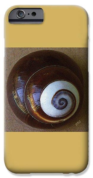 Brg iPhone Cases - Seashells Spectacular No 26 iPhone Case by Ben and Raisa Gertsberg
