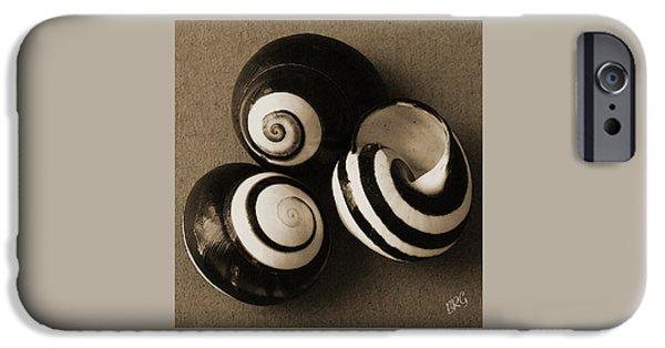 Raisa Gertsberg iPhone Cases - Seashells Spectacular No 27 iPhone Case by Ben and Raisa Gertsberg