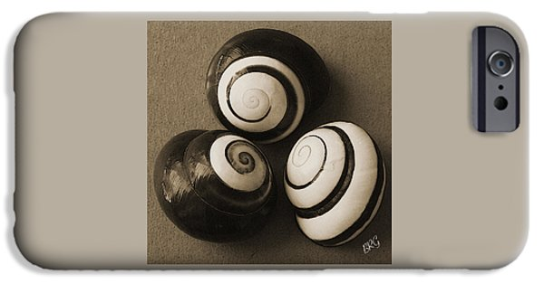 Raisa Gertsberg iPhone Cases - Seashells Spectacular No 28 iPhone Case by Ben and Raisa Gertsberg