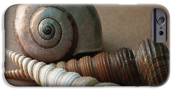 Raisa Gertsberg iPhone Cases - Seashells Spectacular No 29  iPhone Case by Ben and Raisa Gertsberg