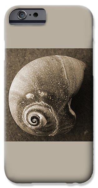 Seashells Spectacular No 31 iPhone Case by Ben and Raisa Gertsberg
