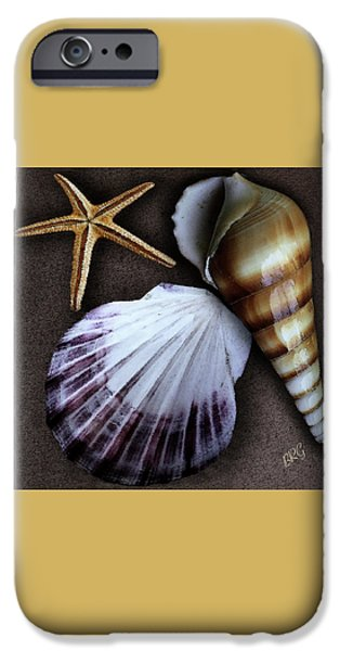 Brg iPhone Cases - Seashells Spectacular No 37 iPhone Case by Ben and Raisa Gertsberg