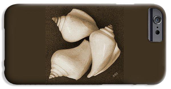 Raisa Gertsberg iPhone Cases - Seashells Spectacular No 4 iPhone Case by Ben and Raisa Gertsberg