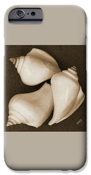 Brg iPhone Cases - Seashells Spectacular No 4 iPhone Case by Ben and Raisa Gertsberg
