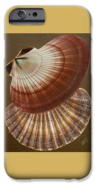 Seashells Spectacular No 53 iPhone Case by Ben and Raisa Gertsberg