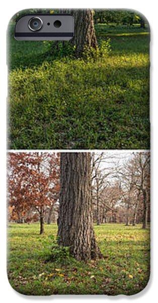 Autumn iPhone Cases - Seasonal Passage Number 1 iPhone Case by Steve Gadomski