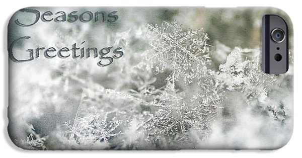Wintertime iPhone Cases - Seasons Greetings iPhone Case by Darren Fisher