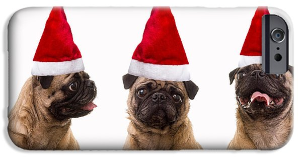 Santa iPhone Cases - Seasons Greetings Christmas Caroling Pug Dogs Wearing Santa Claus Hats iPhone Case by Edward Fielding