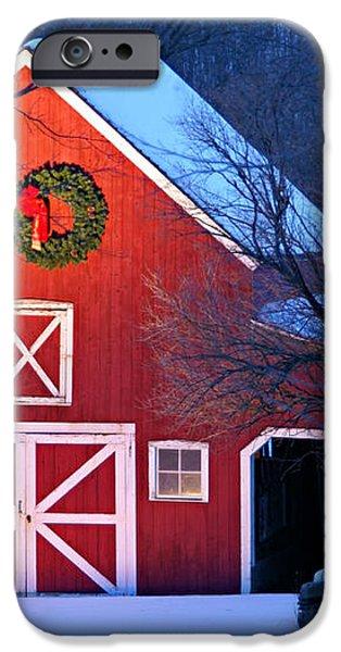 Seasons Greetings iPhone Case by Thomas Schoeller