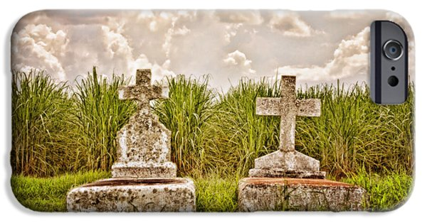 Head Stone iPhone Cases - Seasons of Life iPhone Case by Scott Pellegrin