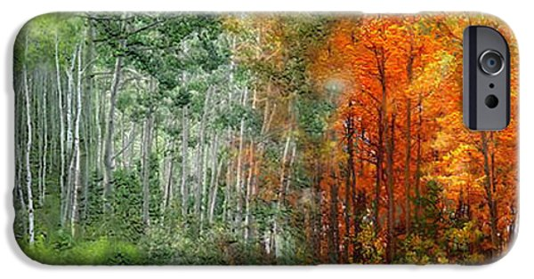 Tree Art Print Mixed Media iPhone Cases - Seasons Of The Aspen iPhone Case by Carol Cavalaris