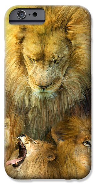 African Lion Art iPhone Cases - Seasons Of The Lion iPhone Case by Carol Cavalaris