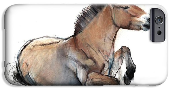 Animals Photographs iPhone Cases - Seated Przewalski, 2011, Charcoal, Conté And Pastel On Paper iPhone Case by Mark Adlington