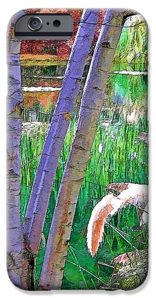Secluded Pond iPhone Case by Chuck Staley