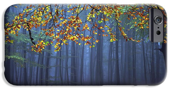 Autumn Trees iPhone Cases - Seconds Before The Light Went Out iPhone Case by Roeselien Raimond