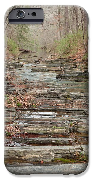 Recently Sold -  - Creek iPhone Cases - Secret Creek iPhone Case by Iris Greenwell