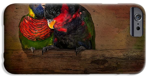 Parakeet iPhone Cases - Secrets iPhone Case by Susan Candelario