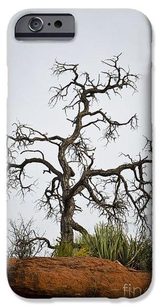 Sedona iPhone Cases - Sedona Landscape VII iPhone Case by David Gordon