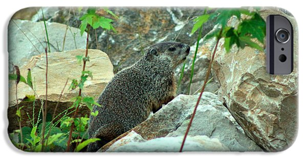 Groundhog Digital Art iPhone Cases - See Rock City iPhone Case by Lorna Rogers Photography