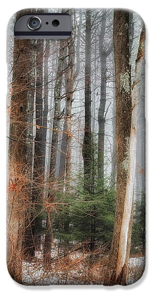 Seeing the Trees Thru the Forest iPhone Case by Bill  Wakeley