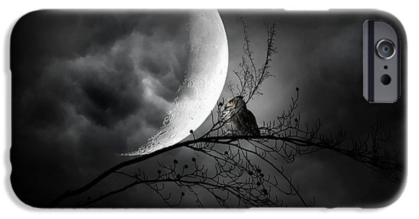 Barn Owl iPhone Cases - Seer Of Souls iPhone Case by Lourry Legarde