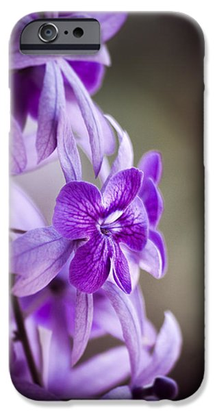 Allium Hollandicum iPhone Cases - Sensational Purple iPhone Case by William Shevchuk
