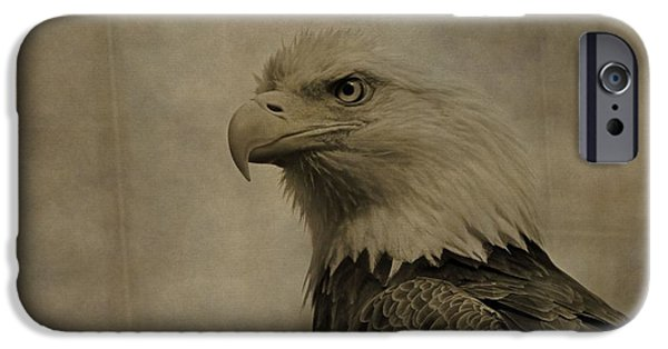 Eagle iPhone Cases - Sepia Bald Eagle Portrait iPhone Case by Dan Sproul