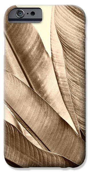 Sepia Leaves iPhone Case by Cheryl Young