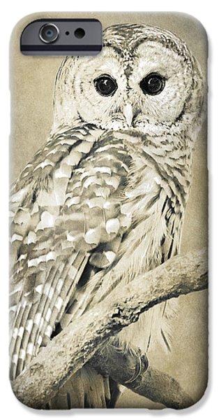 Rollo Digital Art iPhone Cases - Sepia Owl iPhone Case by Christina Rollo