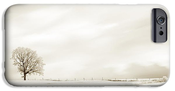 Interior Scene iPhone Cases - Sepia Panorama Tree iPhone Case by Ulrich Schade